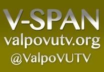VSPAN copy